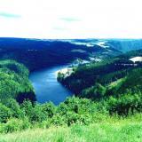 Familien im Thüringer Wald