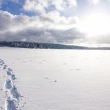 Schnee-Wanderung