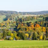 Wurzbach im Herbst