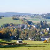 Wurzbach im Morgentau
